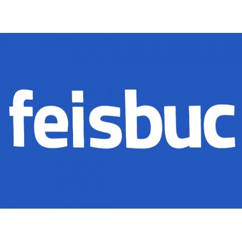feisbuc2-500x500